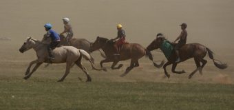 Reasons for not skipping naadam festival tours
