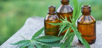 The Reasons of the Popularity and Effectiveness of CBD Oil