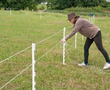 3 Tips for Getting the Most from Your Electric Fence