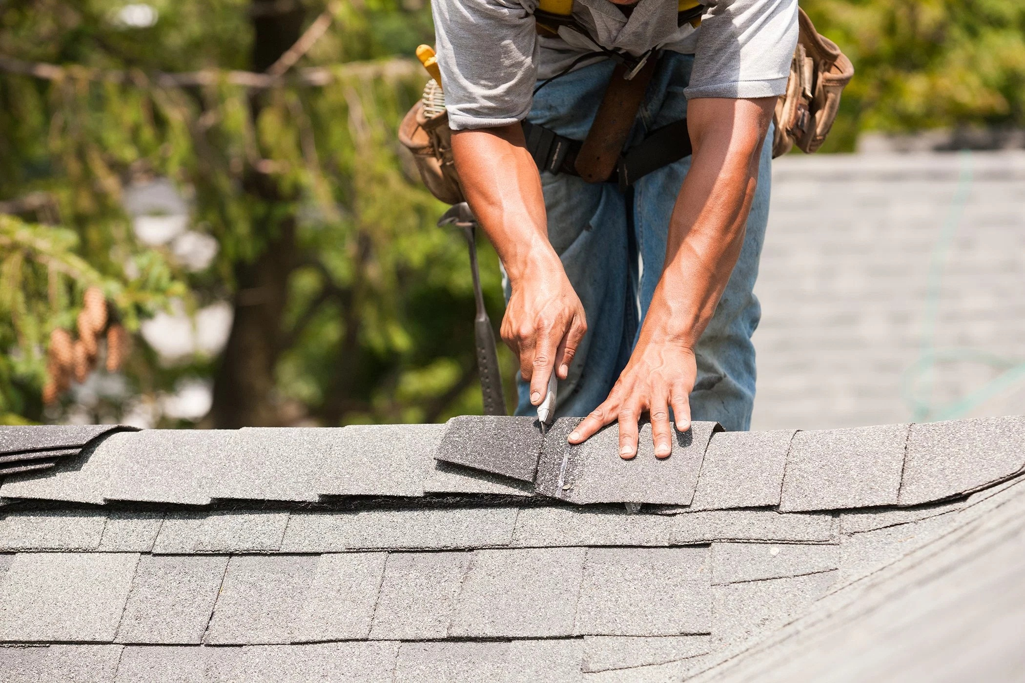 Asphalt shingle roofing is what you should opt for