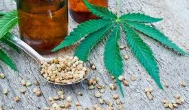 CBD is both safe and useful for humans