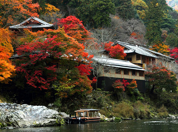 Spend the autumn in Japan To Perceive the Endless Beauty